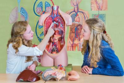woman pointing to lungs demonstrating PFT Testing to a patient